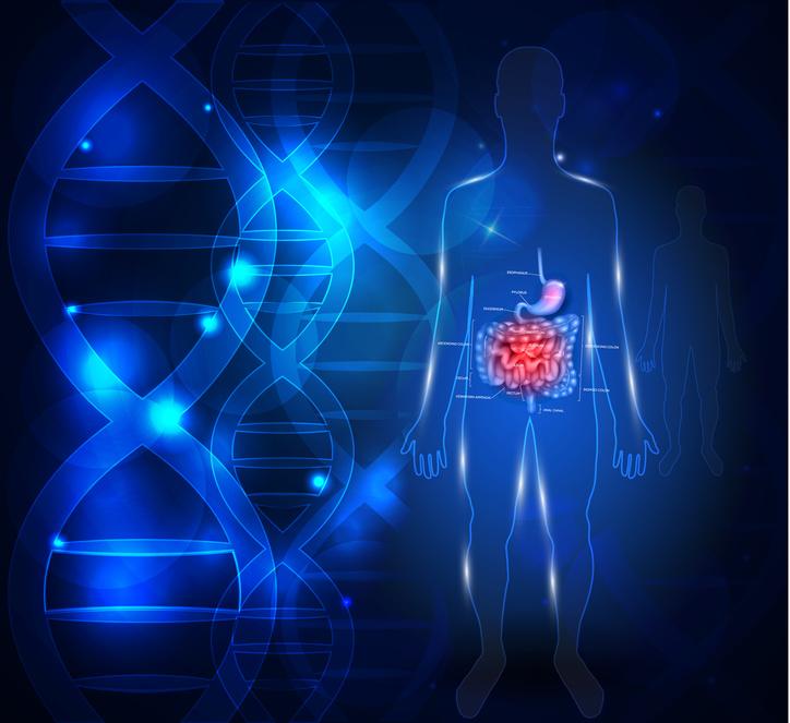 Zdrowie zaczyna się w jelitach – probiotyki