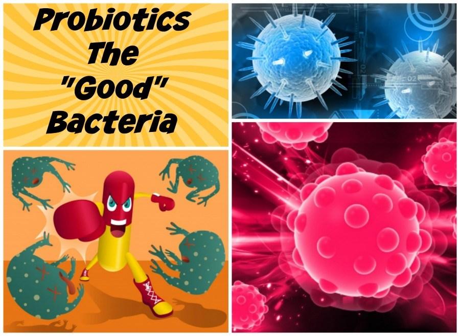 Jak skutecznie budować odporność, czyli ponownie o probiotykach